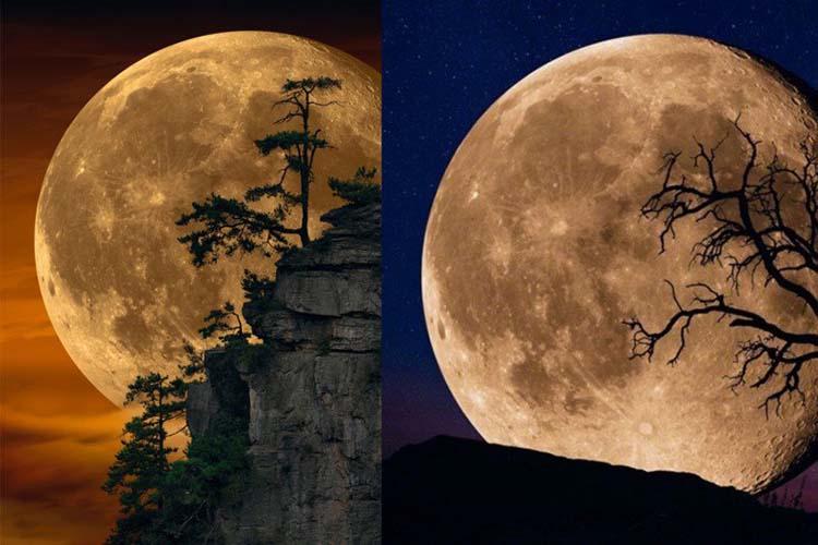 「Moonlit Dreams」的月球被指與 Lik 另一幅作品「Bella Luna」的完全相同 如果大家想看「Moonlit Dreams」的放大超高清版本,可以瀏覽 Peter Lik 的網站。 看過照片及以上觀點後,大家又對作品是否「造假」又有何看法?可以到