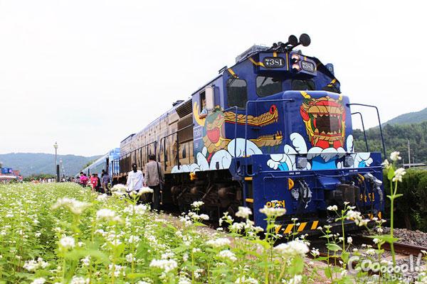韩国S-train