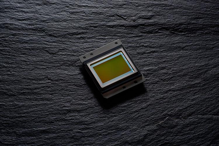 傳Nikon D6 引入混合式對焦感光元件? - DCFever com